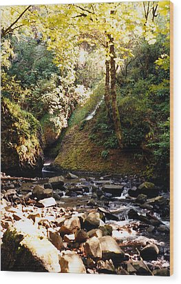 Wood Print featuring the photograph Stream Bed Oregon by Maureen E Ritter