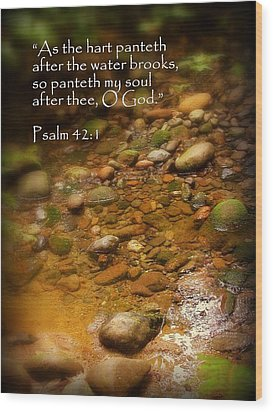 Stream Bed Psalm 42 Wood Print by Cindy Wright