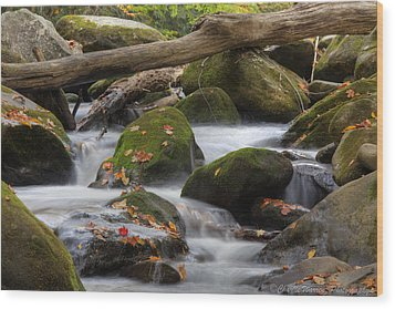Stream Of Thought Wood Print by Charles Warren