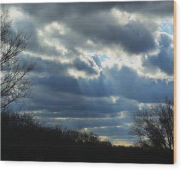 Wood Print featuring the photograph Streaming by Mary Zeman
