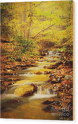 Streams Of Gold Wood Print by Darren Fisher