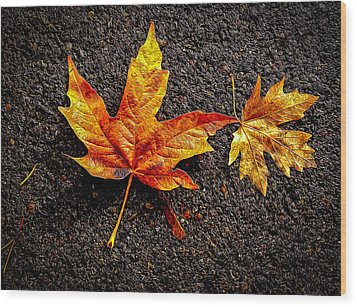 Wood Print featuring the photograph Street Leaf by Ken Stanback