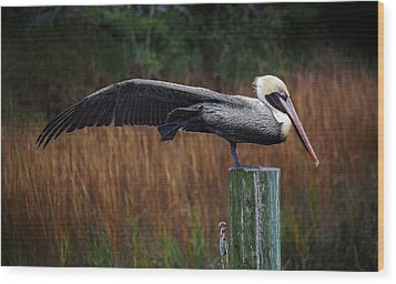 Stretch It Out Wood Print by Paulette Thomas