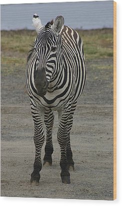 Stripes Wood Print by Tia Anderson-Esguerra