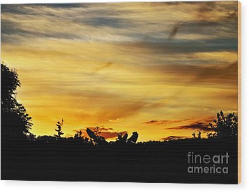 Stripey Sunset Silhouette Wood Print by Kaye Menner