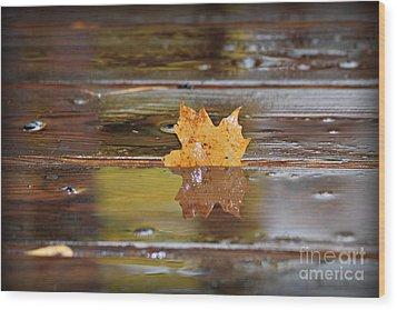 Stuck Maple Leaf Wood Print by Lila Fisher-Wenzel