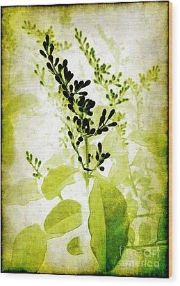 Study In Green Wood Print by Judi Bagwell