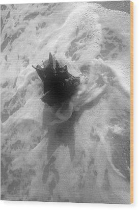 Stump In The Surf Wood Print by Elizabeth  Doran