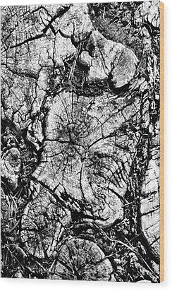 Stumped Wood Print by Mike McGlothlen