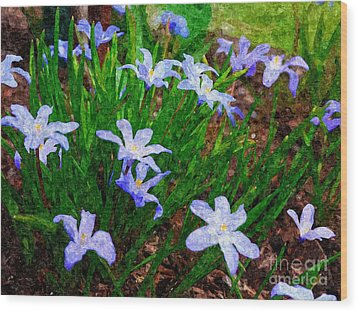 Styling In Blue Wood Print by Nancie DeMellia