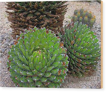 Succulent Cactus Wood Print