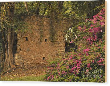 Sugar Mill Of The Past In St. Lucia Wood Print