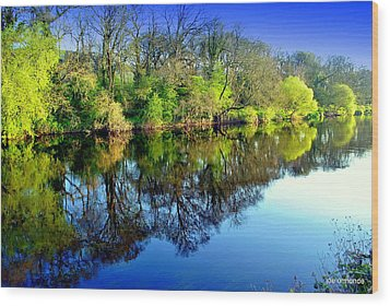 Suir Reflections Wood Print
