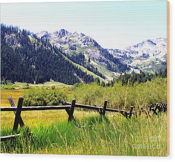 Summer At Squaw Valley Wood Print by Anne Raczkowski