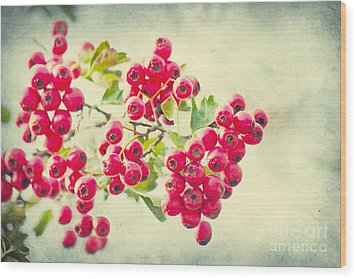Summer Berries Wood Print by Angela Doelling AD DESIGN Photo and PhotoArt