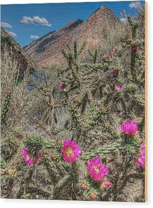 Wood Print featuring the photograph Summer Bloom by Britt Runyon