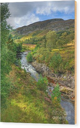Summer Colour In The Glen Wood Print by John Kelly