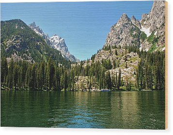 Summer Day At Jenny Lake Wood Print by Dany Lison