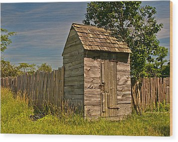 Wood Print featuring the photograph Summer Day On The Farm by Nancy De Flon