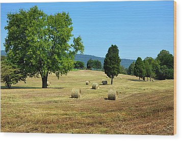 Wood Print featuring the photograph Summer Field by Paul Mashburn