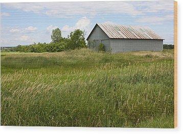 Summer Field Wood Print by Robin Regan