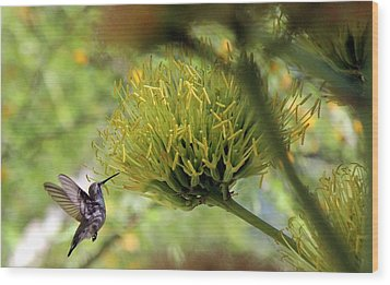 Wood Print featuring the photograph Summer Hummer by Jo Sheehan