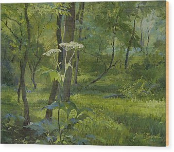 Summer In Fullersburg Woods Wood Print