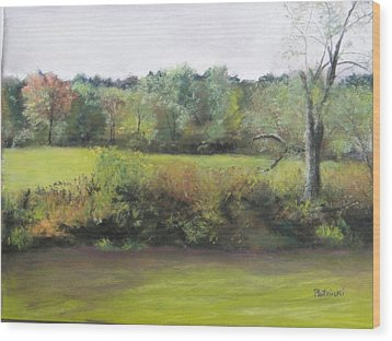 Wood Print featuring the photograph Summer Meadow by Cindy Plutnicki