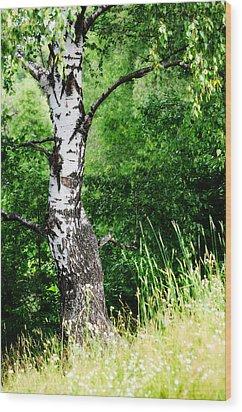 Summer Memory Wood Print by Jenny Rainbow