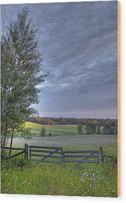 Summer Pasture Wood Print by Heather  Rivet