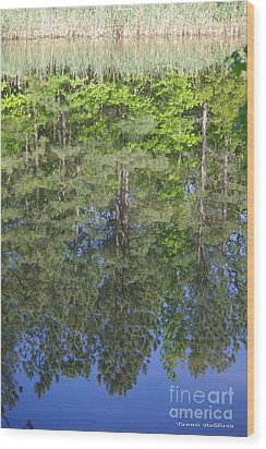 Wood Print featuring the photograph Summer Reflection by Tannis  Baldwin
