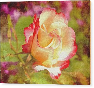 Summer Rose With Texture Wood Print by Cathie Tyler