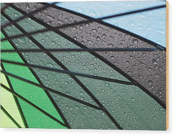 Summer Shower Wood Print by Denice Breaux