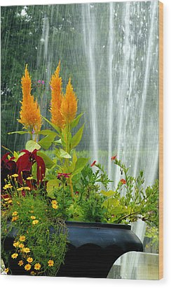 Wood Print featuring the photograph Summer Spray by Michelle Joseph-Long