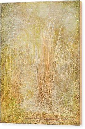 Summer's End Wood Print by Judi Bagwell
