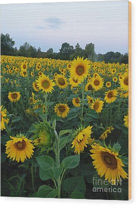 Summers Glory Wood Print by Gerald Strine