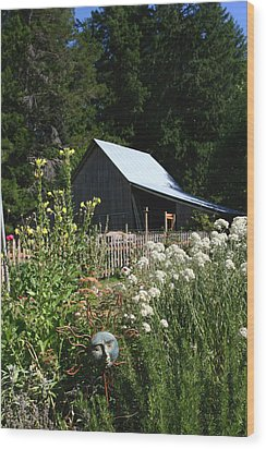Wood Print featuring the photograph Sun Barn by Lorraine Devon Wilke