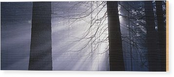 Sun Breaking Through Mists Wood Print by Ulrich Kunst And Bettina Scheidulin