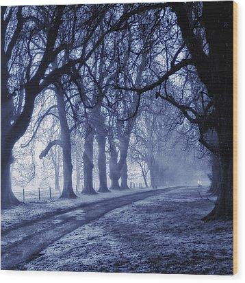 Sun Ice And Mist Wood Print by Martin Crush