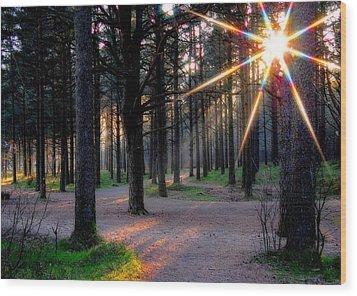Sun Rays Wood Print by Sonya Kanelstrand