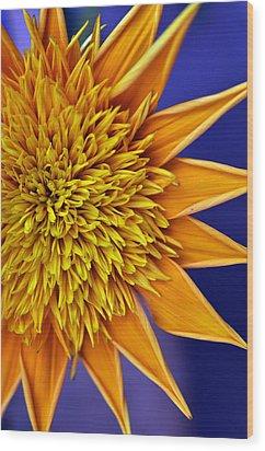Sunburst Wood Print by Sandy Fisher