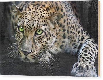 Sundari Wood Print by Big Cat Rescue