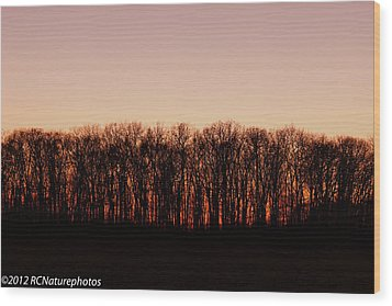Wood Print featuring the photograph Sundown In Silhouette by Rachel Cohen