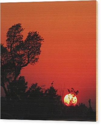 Sundown Wood Print by Todd Sherlock