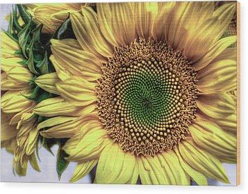 Sunflower 28 Wood Print by Natasha Bishop