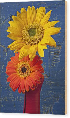 Sunflower And Mum Wood Print by Garry Gay
