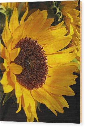 Sunflower--dappled Light Wood Print by Vikki Bouffard
