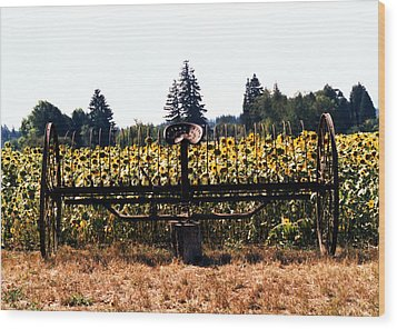 Sunflower Farm Scene Wood Print by Maureen E Ritter