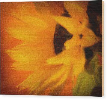 Sunflower Wood Print by James Bethanis