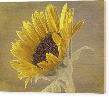 Sunflower Wood Print by Fiona Messenger